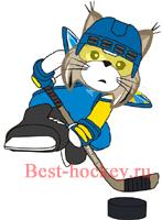Туров на чемпионат мира по хоккею 2013